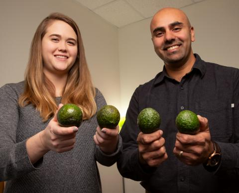 Graduate student Caitlyn Edwards and professor Naiman Khan hold avocados