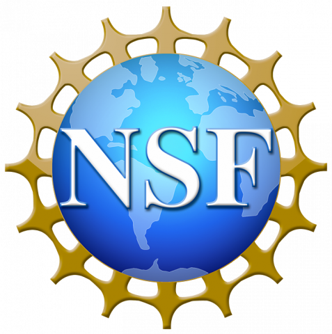nsf grfp 2019 results