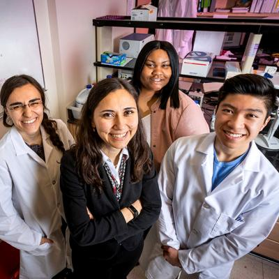 Targeting estrogen receptor-positive breast tumors with the XPO1 antagonist selinexor and the tamoxifen byproduct 4-OHT simultaneously rewires the cells' metabolism to overcome endocrine resistance, University of Illinois researchers  found in a new study.