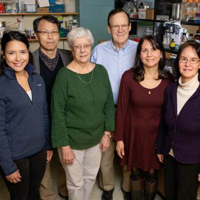 Researchers including, from left, graduate student Valeria Sanabria Guillen, research scientist Sung Hoon Kim, researcher Kathy Carlson, chemistry professor John Katzenellenbogen, research specialist Yvonne Ziegler, and molecular and integrative physiology professor Benita Katzenellenbogen developed new drug agents to inhibit a pathway that contributes to cancer. The compounds killed cancer cells and reduced the growth of breast cancer tumors in mice.